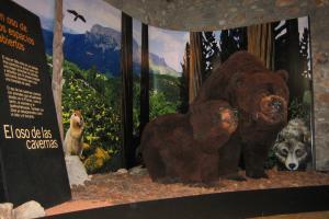 Cueva osos de tella 5