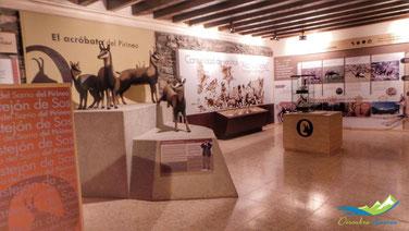 Museo del Sarrio en Castejón de Sos