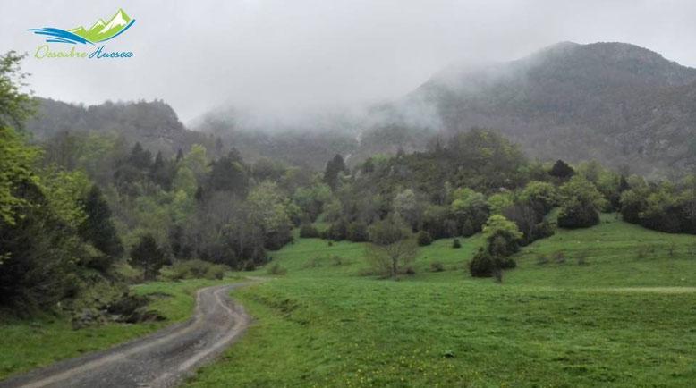 Pista hacia el Valle de Otal